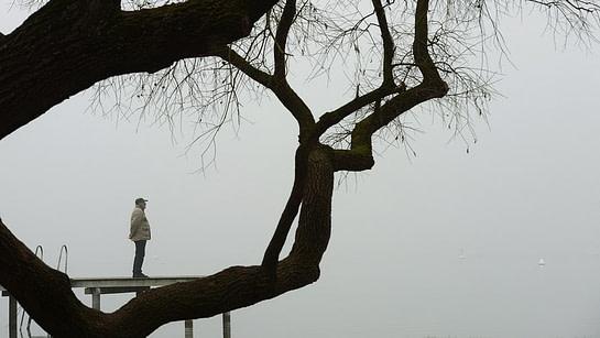 *** одиночество-вымысел-или-реальность-нет-смысла-нет-цели ***