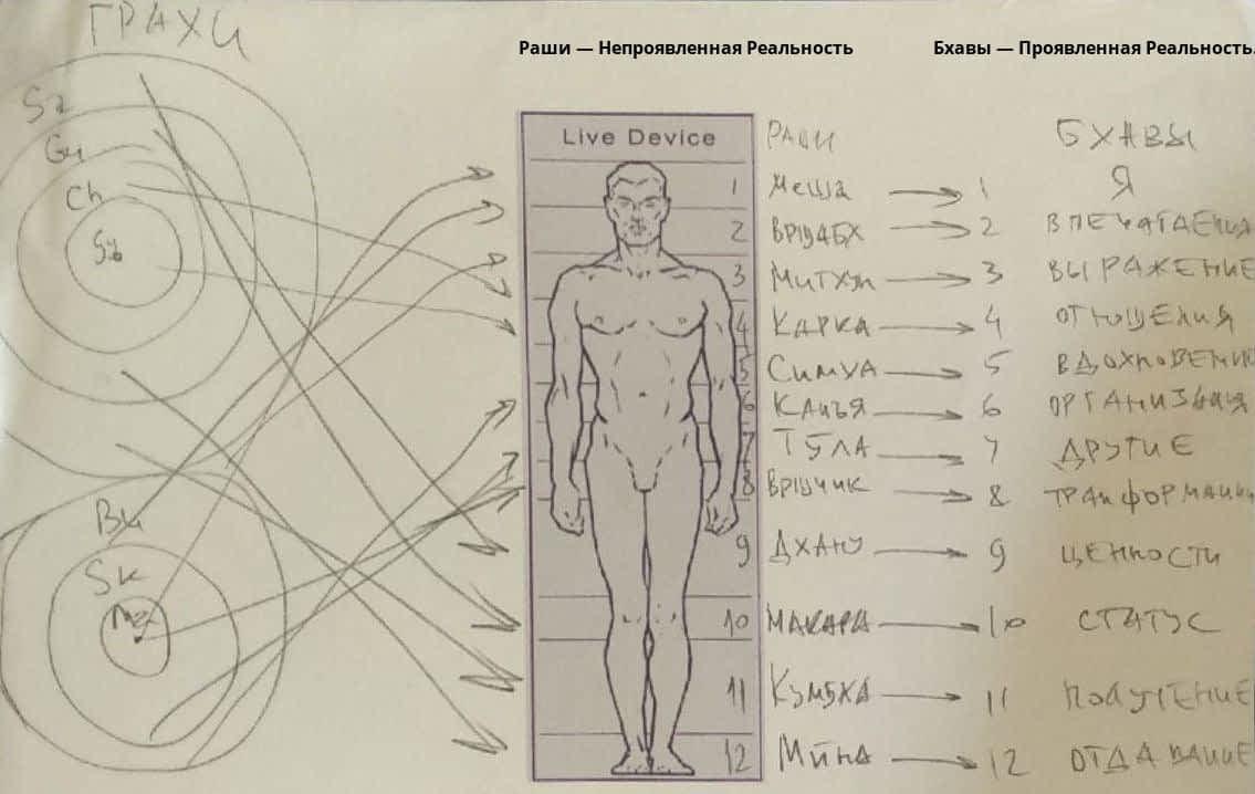 *** 12 Раши Тантра-Джйотиш Ведическая астрология ЛайвДевайс LiveDevice Место Функциональный Уровень Способность Функция ⛋⌚*