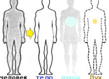 человек = дух + тело