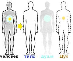 человек=дух+душа+тело