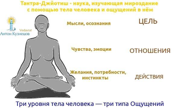 *** 3 типа ощущений — мысли-сознание чувства-эмоции желания-потребности-инстинкты | Тантра-Джйотиш — тело-знания | Женщина ***